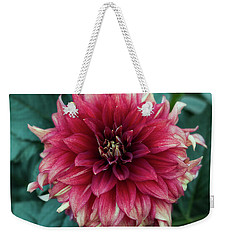 Weekender Tote Bag featuring the photograph Dahlia 'dazzling Magic' by Ann Jacobson