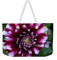 Weekender Tote Bag featuring the photograph Dahlia by Denise Romano