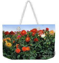 Dahlia Flower Panorama Weekender Tote Bag