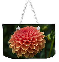 Dahlia In Detail Weekender Tote Bag by Arlene Carmel