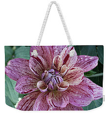 Weekender Tote Bag featuring the photograph Dahlia 'nonette' by Ann Jacobson