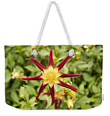 Weekender Tote Bag featuring the photograph Dahlia Star by Brian Eberly