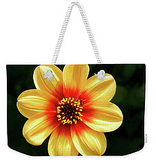 Dahlias Flower - Yellow Tones Weekender Tote Bag