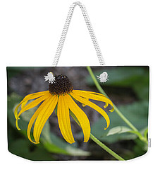 Weekender Tote Bag featuring the photograph Dainty Susan by Arlene Carmel