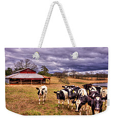 Dairy Heifer Groupies The Red Barn Art Weekender Tote Bag by Reid Callaway