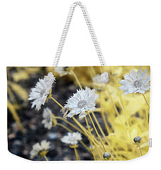 Daisey Weekender Tote Bag by Paul Seymour
