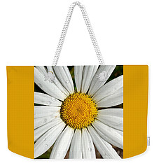 Weekender Tote Bag featuring the painting Daisy  Dew by Jennifer Lake
