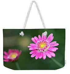 Weekender Tote Bag featuring the photograph Daisy Flower by Pradeep Raja Prints