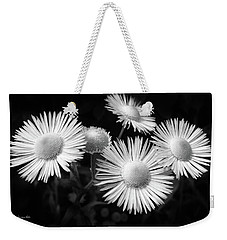 Weekender Tote Bag featuring the photograph Daisy Flowers Black And White by Christina Rollo