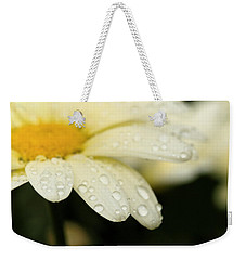 Daisy In Spring Weekender Tote Bag by Angela Rath