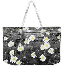 Weekender Tote Bag featuring the photograph Daisy Patch by Benanne Stiens