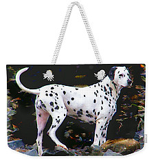 Dalmatian On The Rocks Weekender Tote Bag