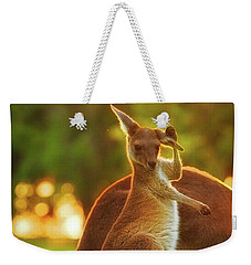 Weekender Tote Bag featuring the photograph Damn Flies, Yanchep National Park by Dave Catley