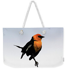 Weekender Tote Bag featuring the photograph Dancing Blackbird by Shane Bechler
