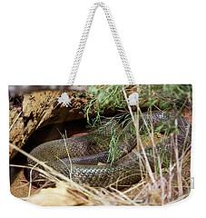 Weekender Tote Bag featuring the photograph Dandarabilla The Inland Taipan by Miroslava Jurcik