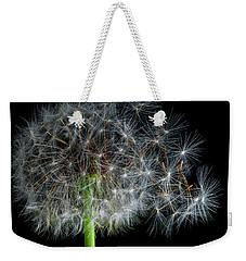 Weekender Tote Bag featuring the photograph Dandelion 3 by James Sage