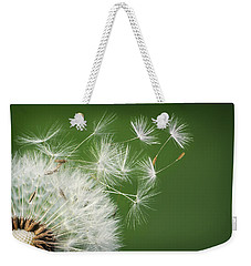 Weekender Tote Bag featuring the photograph Dandelion Blowing by Bess Hamiti