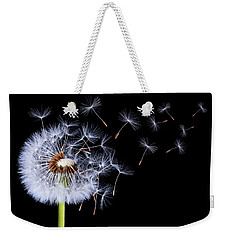 Weekender Tote Bag featuring the photograph Dandelion Blowing On Black Background by Bess Hamiti
