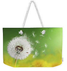 Weekender Tote Bag featuring the photograph Dandelion Clock In Morning by Bess Hamiti