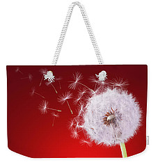 Dandelion Flying On Reed Background Weekender Tote Bag