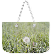 Weekender Tote Bag featuring the photograph Dandelion In The Grass by Cindy Garber Iverson