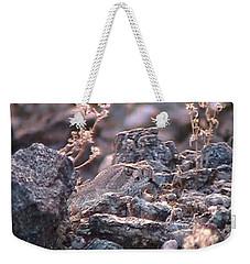 Dangerous Peekaboo  Weekender Tote Bag