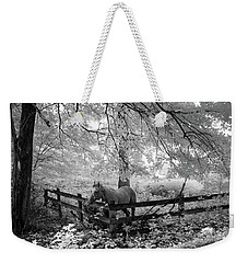 Dappled Horse Weekender Tote Bag
