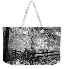Dappled Horse Weekender Tote Bag