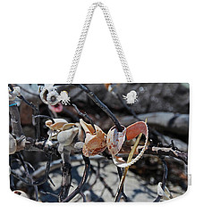 Weekender Tote Bag featuring the photograph Dare To Touch by Michiale Schneider