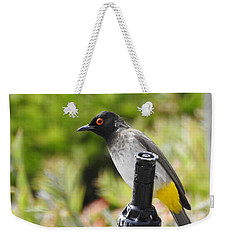 Weekender Tote Bag featuring the photograph Dark-capped Bulbul by Betty-Anne McDonald