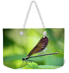 Weekender Tote Bag featuring the photograph Dark Damsel by Bill Pevlor