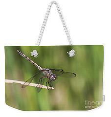 Dashing Dragonfly  Weekender Tote Bag