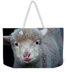 Dave The Sheep  Weekender Tote Bag