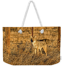 Dawn Raider Weekender Tote Bag