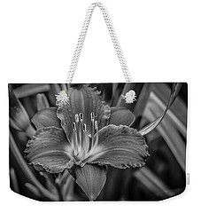 Day Lilly Weekender Tote Bag by Ray Congrove