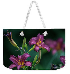 Day Lily Weekender Tote Bag by David Bearden