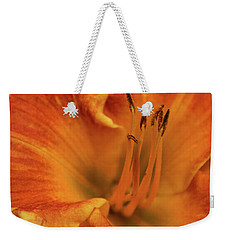 Weekender Tote Bag featuring the photograph Daylily Close-up by Sandy Keeton