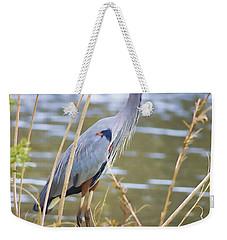 De Leon Springs Blue Weekender Tote Bag by Deborah Benoit
