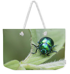 Dead-nettle Leaf Beetle - Chrysolina Fastuosa Weekender Tote Bag by Jivko Nakev