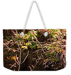 1 Of 6 Dead River Falls  Marquette Michigan Section Weekender Tote Bag