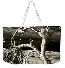 Weekender Tote Bag featuring the photograph Dead Tree In Death Valley 13 by Micah May