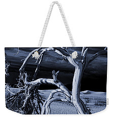 Weekender Tote Bag featuring the photograph Dead Tree In Death Valley 14 by Micah May