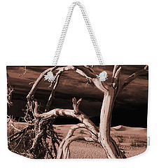 Weekender Tote Bag featuring the photograph Dead Tree In Death Valley 15 by Micah May