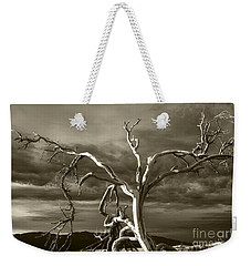 Weekender Tote Bag featuring the photograph Dead Tree In Death Valley 8 by Micah May