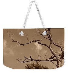 Weekender Tote Bag featuring the photograph Dead Wood by Rob Hans