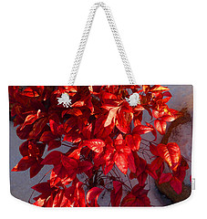December Burning Bush Weekender Tote Bag by Anastasia Savage Ealy