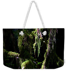 Weekender Tote Bag featuring the photograph Deep In The Forest by Lori Seaman