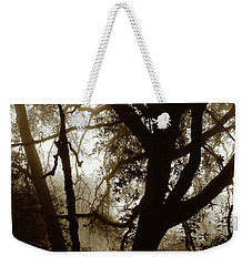 Weekender Tote Bag featuring the photograph Deep In The Sequoia National Forest by Ayasha Loya