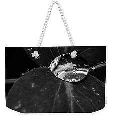 Weekender Tote Bag featuring the photograph Deep Refraction Between Leaves by Darcy Michaelchuk