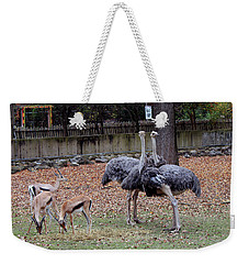 Deer And Ostriches Weekender Tote Bag by Suhas Tavkar
